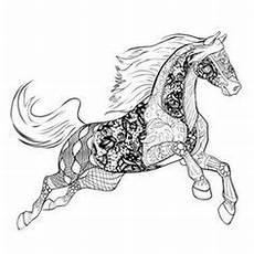 die 865 besten bilder horses malvorlagen pferde