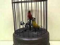 uccellini in gabbia gabbia 2 uccelli