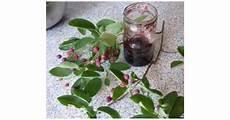 felsenbirnen marmelade heimchen auf www rezeptwelt de