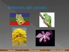 estado bolivar simbolos naturales emilio mendez 23 9c amazonas