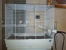 gabbie cocorite gabbia per cocoriti cocorite e pappagallini ondulati