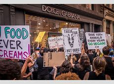 Animal rights activists protest at Midtown's Dolce & Gabbana