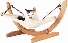 amaca gatto amaca per gatti come orientarsi il mio gatto 232 leggenda
