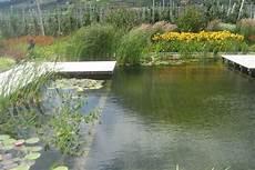 Schwimmteiche Platter Gartenwelt Garten Und Landschaftsbau