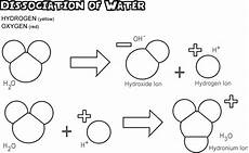what ions form when water dissociates chemeleon april 2010