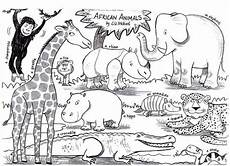 Ausmalbilder Tiere Afrika Animals Liz Million Author And Illustrator Of