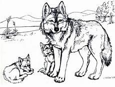 Bilder Zum Ausmalen Wolf Wolf Ausmalbilder Zum Ausdrucken Malvor