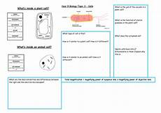 year 9 cells revision by uk teaching resources tes