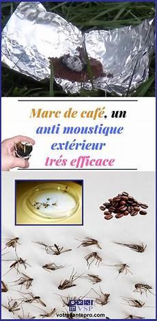 marc de caf 233 un anti moustique ext 233 rieur efficace anti