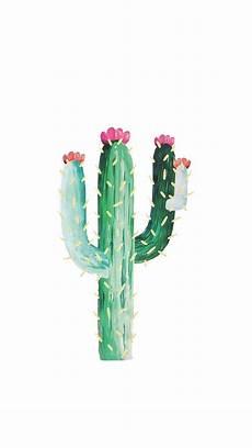 cactus flower iphone wallpaper cactus wallpaper from my jewellery phone