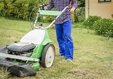 Richtiges Vertikutieren F 252 R Einen Sch 246 Nen Rasen