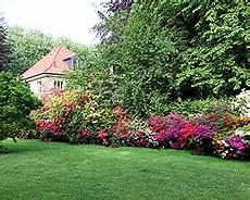 Blumen Sonniger Standort - stauden f 252 r den garten sonniger standort gartengestaltung