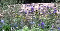 bepflanzung vor einer mauer trockenmauer bauanleitung mein sch 246 ner garten