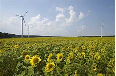 strom ins hausnetz einspeisen greenpeace energy will strom durch elektrolyseure in