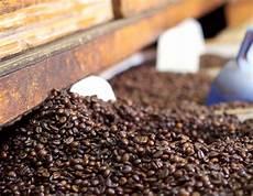 Kaffeepulver Als Dünger - kaffeepulver als nachhaltiger d 252 nger vireo mehr als