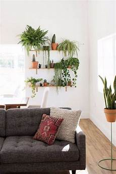 Living Room Home Decor Ideas With Plants by 10 Beautiful Ways To Decorate Indoor Plant In Living Room