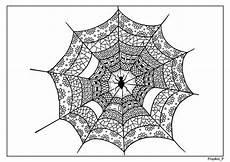 Malvorlagen Spinnennetz Malvorlagen Seiten Spinnennetz Zentangle Etsy