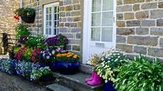 Vorgarten Anlegen Diese Pflanzen Sind Ideal