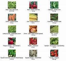 survival seed bank endless garden