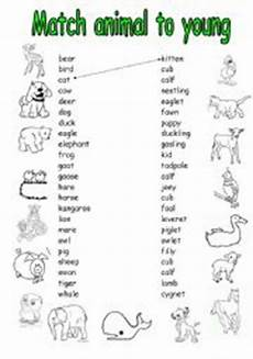 animals and their youngs worksheets 14094 worksheets the animals worksheets page 81