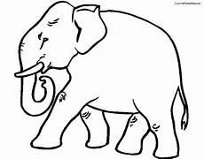 Malvorlagen Baby Elefant Konabeun Zum Ausdrucken Ausmalbilder Elefanten 15742