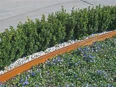 terra s gartenprofil gartenprofil 3000 wegbegrenzung rasenkante