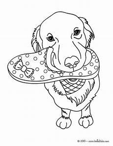 Ausmalbilder Hunde Labrador Labrador Zum Ausmalen Zum Ausmalen De Hellokids