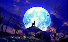 Vollmond Wolf Wallpaper