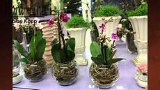 orchideen deko ideen sch 246 n nat 252 rlich ausgarnierte orchideen