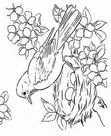 Aquarell Malvorlagen Tiere Sketch In 2020 Malvorlagen Fr 252 Hling Vogel