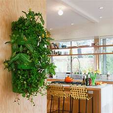 To Make Vertical Garden Indoor Living Wall by Living Wall Planter Indoor Vertical Gardening Urbilis