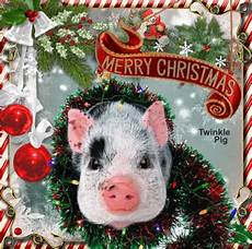 merry christmas from twinkle pig picture 136195525 blingee com