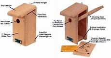 finch bird house plans cute finch bird house plans new home plans design