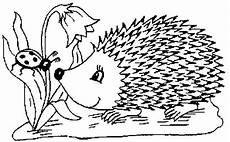 Ausmalbild Hase Und Igel Igel Ausmalbilder Naturstrolche