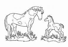ausmalbilder pferde ausmalen new malvorlagen pferde mit fohlen ae photo de