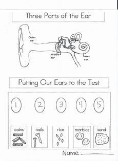 the 5 senses worksheets for grade 12570 five sense worksheet new 100 five senses worksheets for