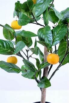 arbre fruitier en pot arbre artificiel fruitier oranger mini en pot int 233 rieur