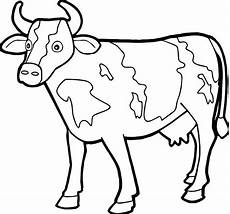 cow coloring pages for at getdrawings free