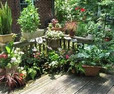 balkon ideen pflanzen hinterhof n 252 tzliche ideen topf gefass richtige pflege