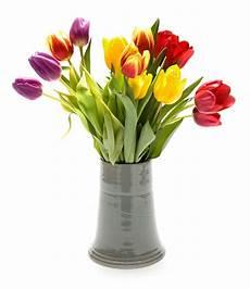 vasi con fiori rimedi per conservare pi 249 a lungo i fiori nei vasi