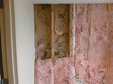 remove mold from drywall in orange county ca gregory