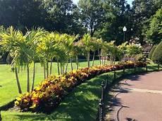josh altidor plants boston garden s flower beds with his caribbean roots radio boston