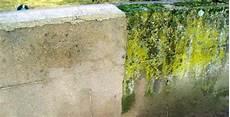 Comment Nettoyer Des Murs Fa 231 Ades Et Terrasses R 233 224