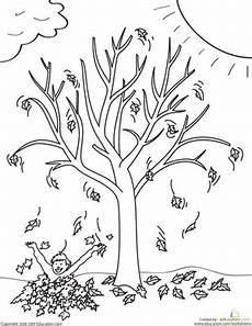 fall tree worksheet education