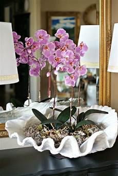orchideen deko ideen deko mit orchideen 31 kreative ideen