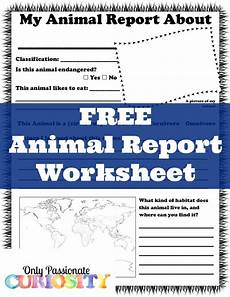 animal report worksheets 14023 free animal report worksheet only curiosity