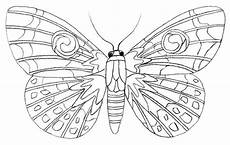 colouring pages easy butterfly blue template