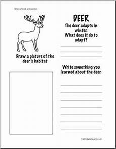 science worksheets websites 12458 mammals science lab science classroom teaching
