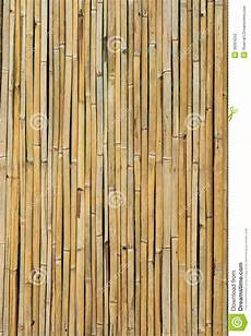 mur en bambou sec photo stock image du grippage