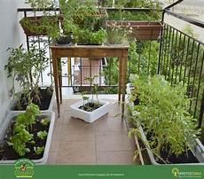 l orto in terrazza effetto terra il mio orto sul balcone